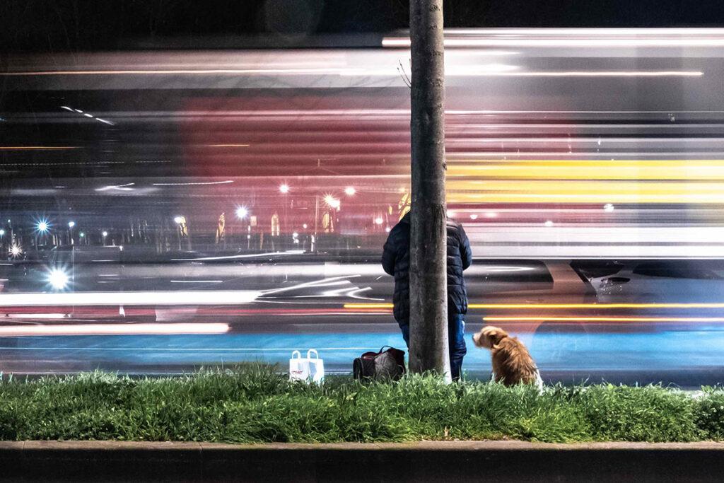 Deutsche Bahn Hund